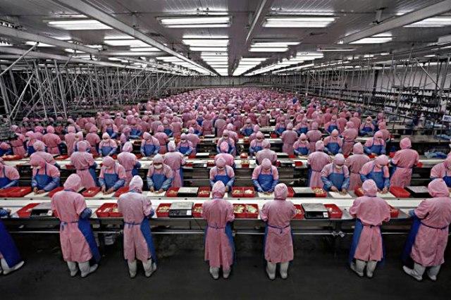 La masiva incroproación de los chinos al empleo global